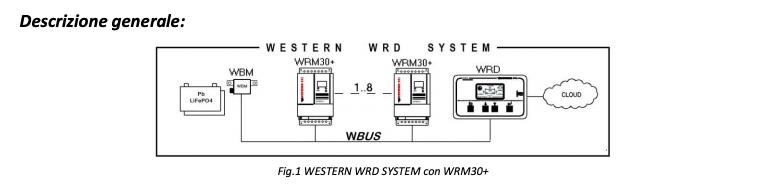Schermata 2020 07 17 alle 15.19.27 Sistema di monitoraggio remoto per WRM20+ e WRM30+ Western co Ryanenergia