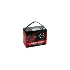 Batteria Silicone 120Ah 12V deep cycle ciclica 1200cicli Zenith Agm ZLS120190 x Fotovoltaico