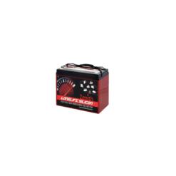 Batteria Silicone 105Ah 12V deep cycle ciclica 1200cicli Zenith Agm ZLS120185 x Fotovoltaico