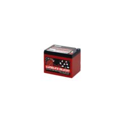 Batteria Silicone 16,5Ah 12V deep cycle ciclica 1200cicli Zenith Agm ZLS120120 x Fotovoltaico